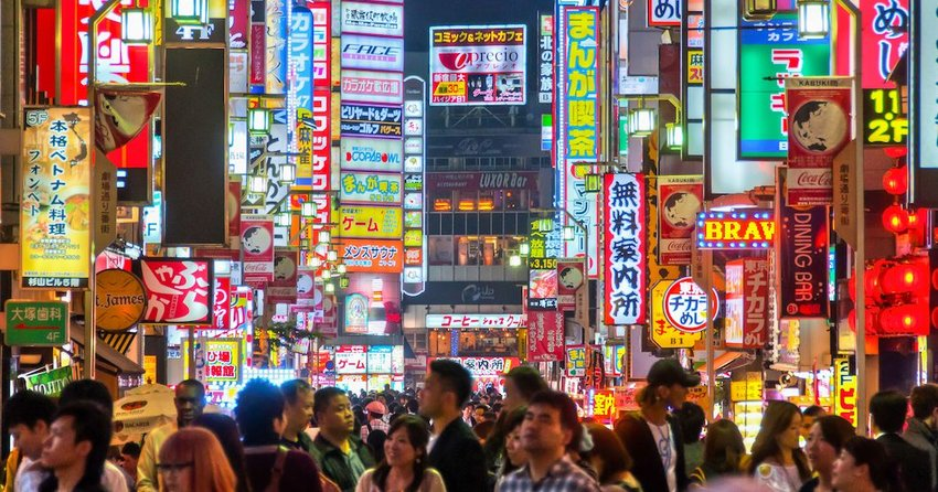 5 Unusual Experiences You Can Only Have in Tokyo
