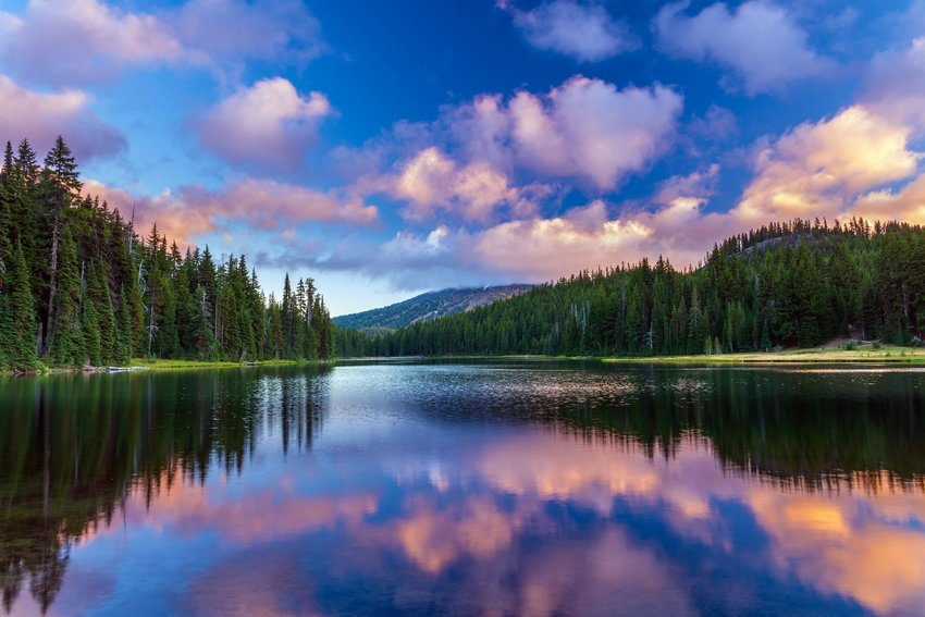 3 Reasons Why Your Next Vacation Should Be to a Lake