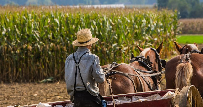 5 Biggest Misconceptions About the Amish