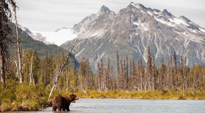 Lake Clark National Park and Preserve, Alaska