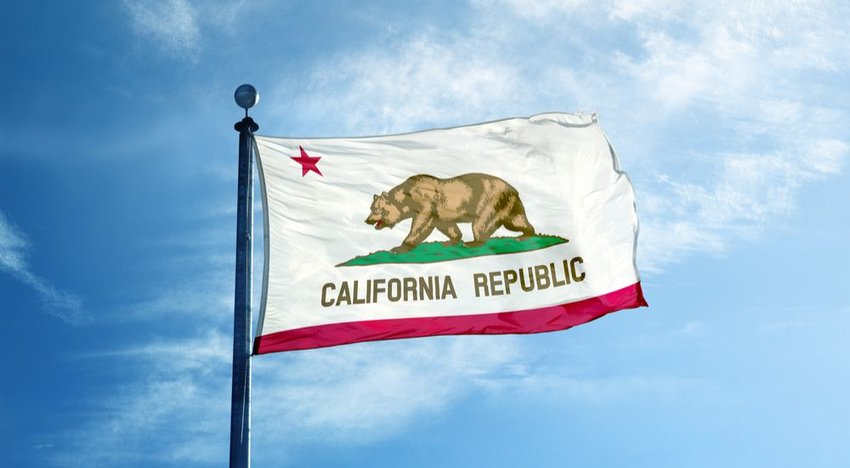The Bear on the California Flag Lived Here