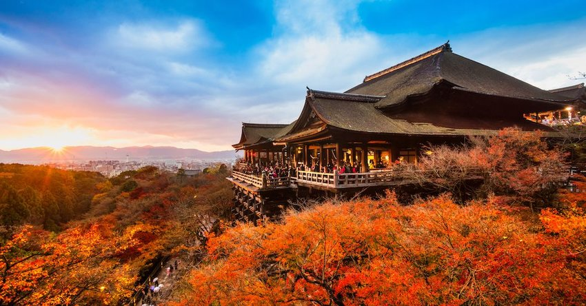 3 Things You Have to Do in Kyoto