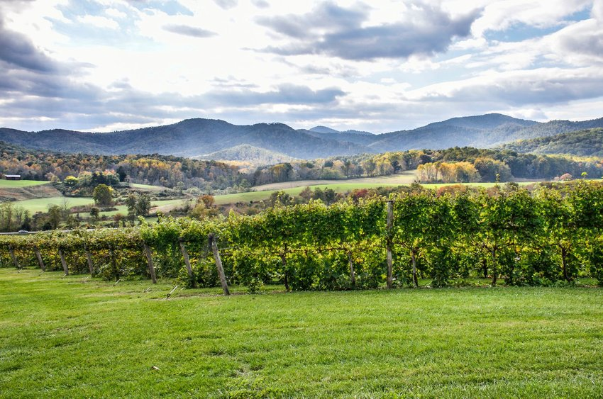 3 Best Wine Tours in the U.S.