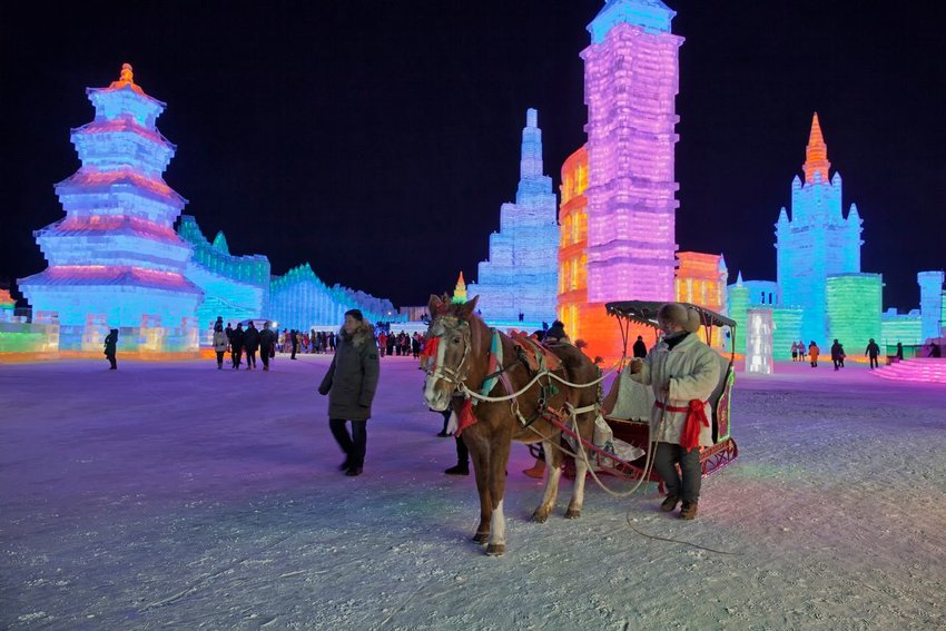 Photo of a horse pulling a cart with ice sculptures in the background