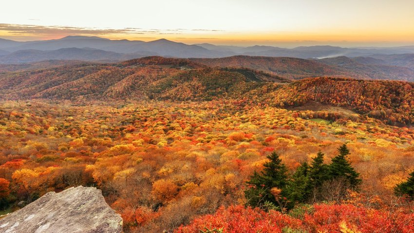 Mountains full of trees in fall colors