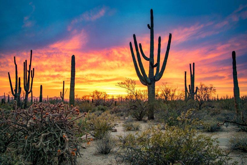 Tucson, Arizona