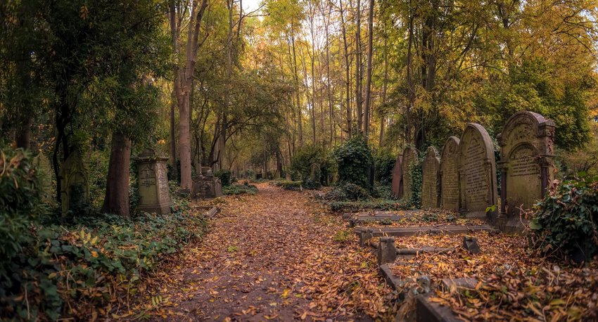 Walking path in London's Highgate Cemetery with tombs to the right of the path