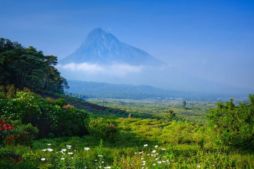 Virunga National Park in the Democratic Republic of the Congo