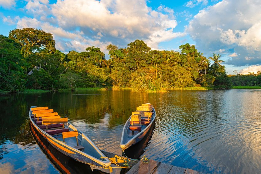 lake and rainforest in Brazil