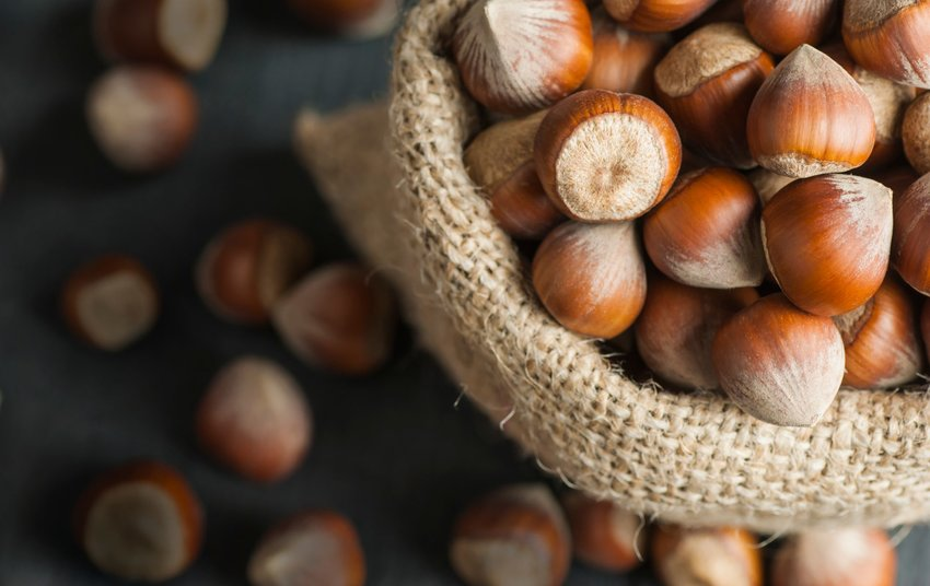 Hazelnuts in a burlap sack on wooden backdrop