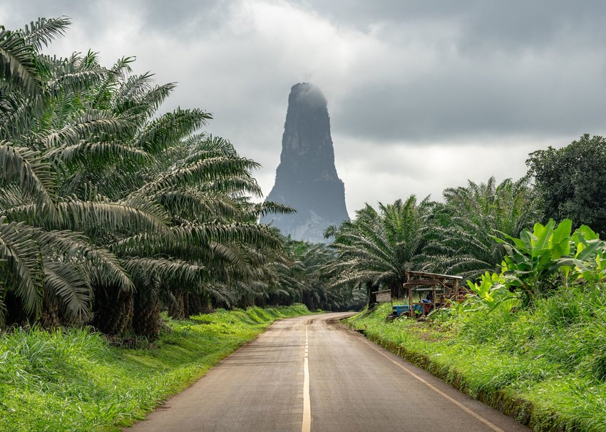 Pico Cão Grande in Sao Tome and Principe behind a road and trees