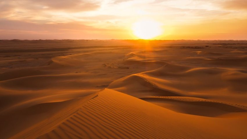The Arabian Desert at Abu Dhabi at sunset