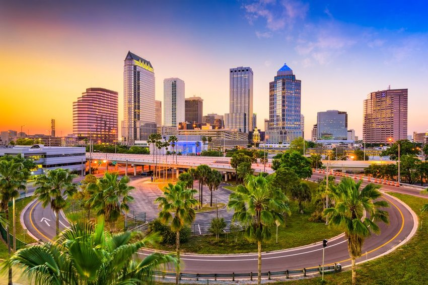 Tampa, Florida skyline with palm trees in front
