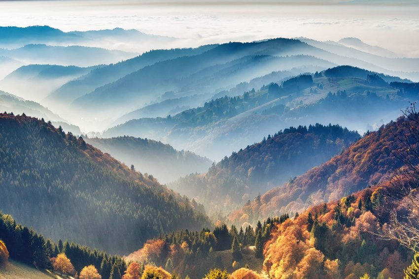 Hills of the Black Forest covered in fog