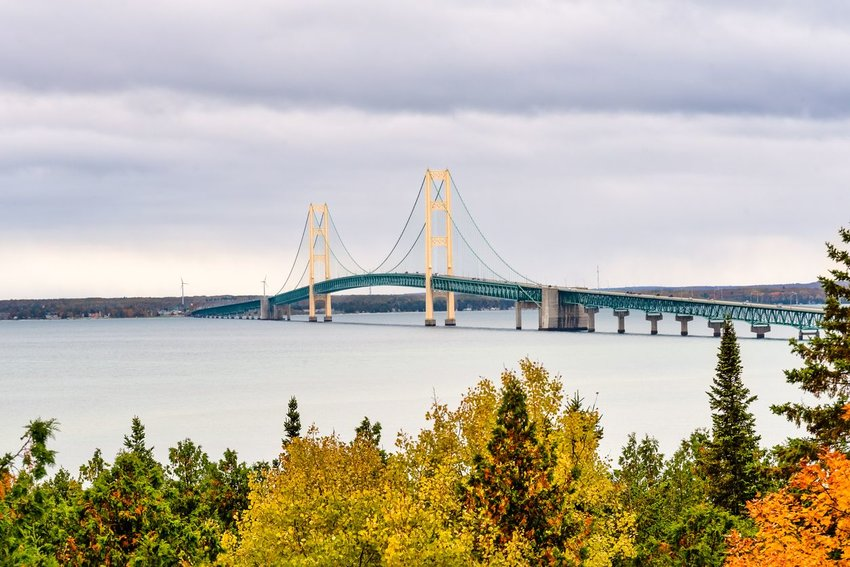 Mackinac Bridge with fall trees in the forground