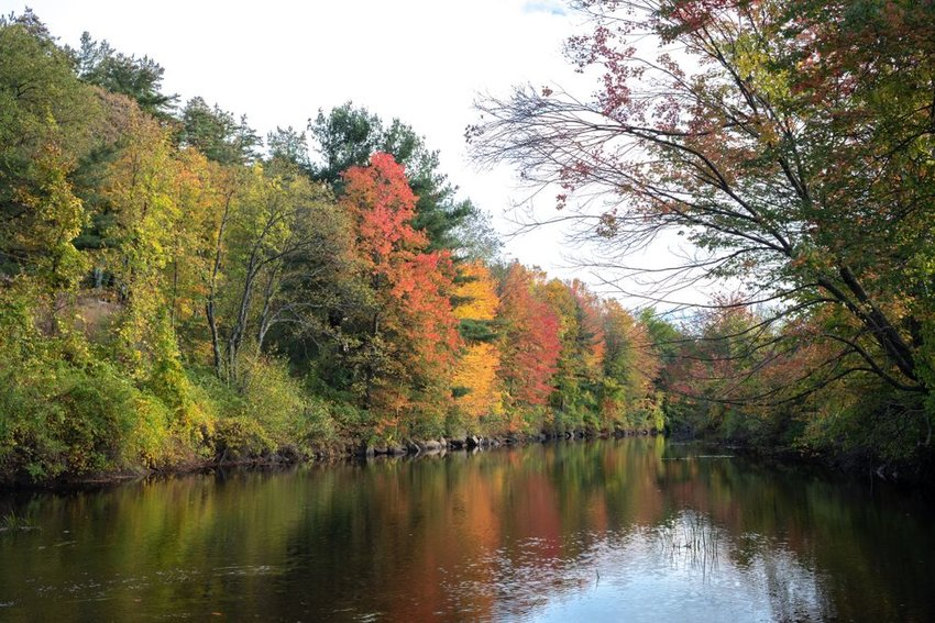 Fall colored trees along the Contoocook River in Peterborough