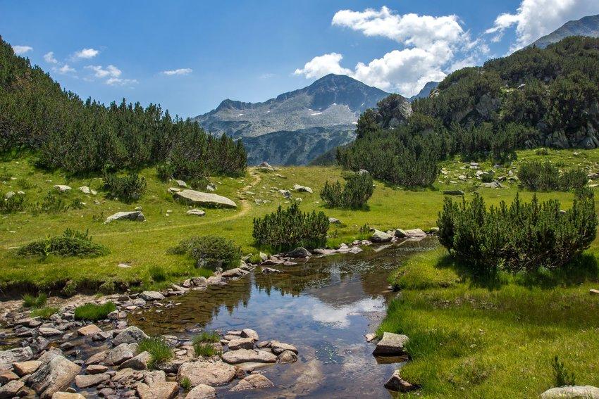 A mountain river near Pirin Mountain, Bulgaria