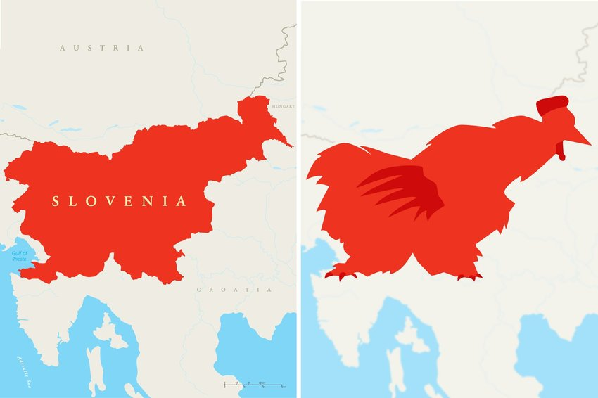 Map of Slovenia with clear view of the country looking similar to a rooster