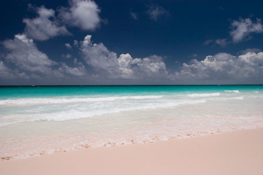 Pink sand beach at Harbour Island, Bahamas