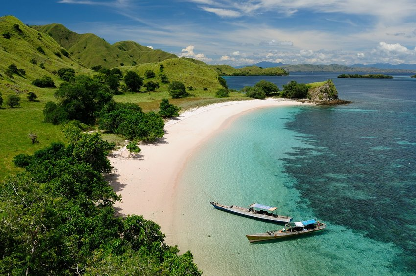 Komodo Island pink beach with lush greenery and boats