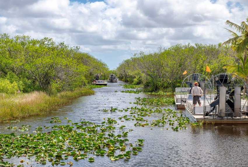 Airboats in the Everglades with lily pads