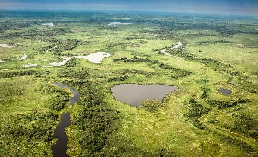 Aerial view of the Pantanal wetlands