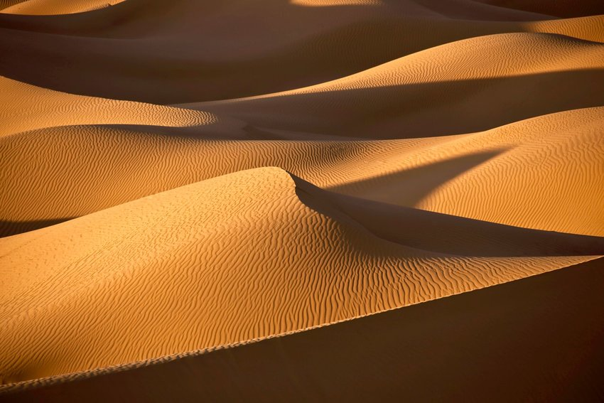 10 Things You Never Knew About the Sahara Desert