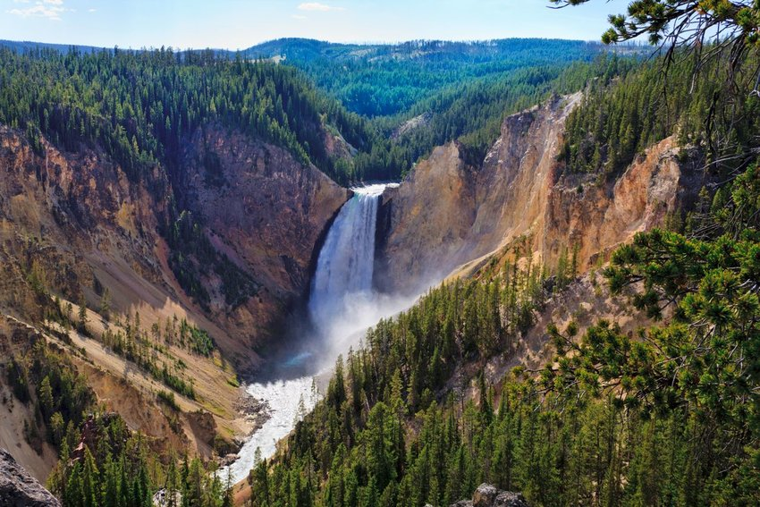 Waterfall from above surrounded by pine trees in Yellowstone National Park