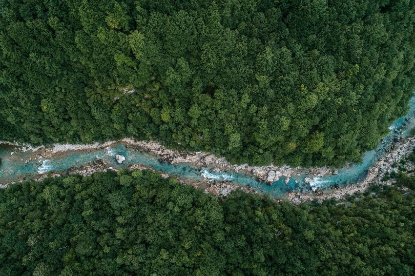 Aerial view of bright blue river through a forest