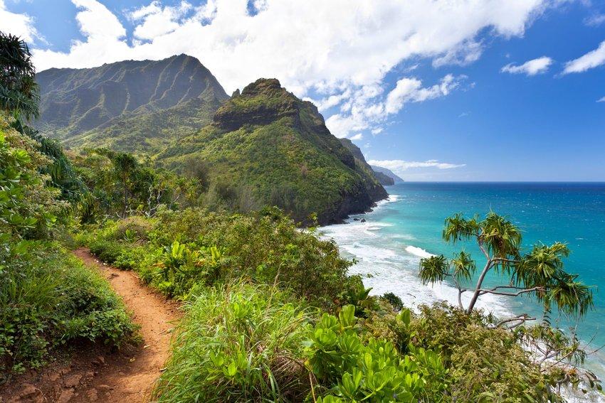 Lush and vibrant Kalalau Trail along the ocean coast of Hawaii