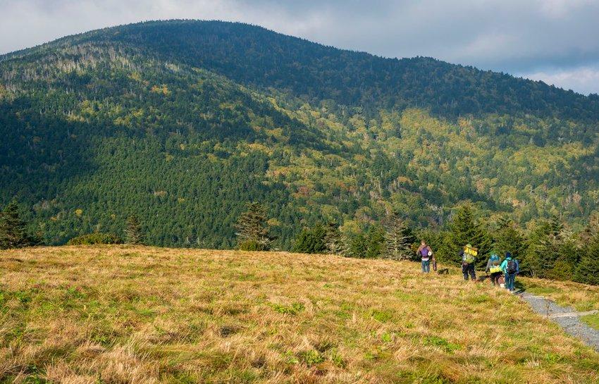 Friends walk on the Appalachian Trail after breaking camp on Roan Mountain