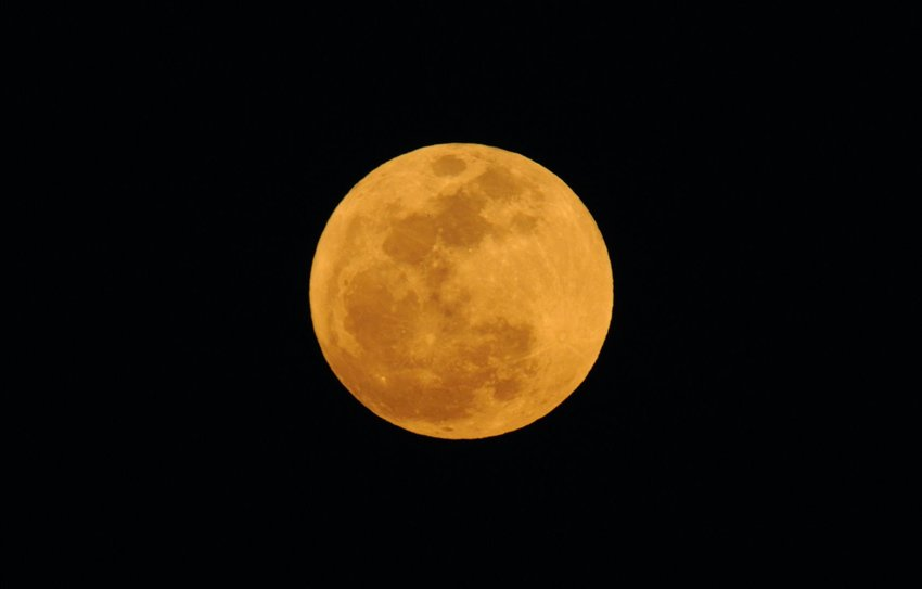 Harvest moon in the dark sky
