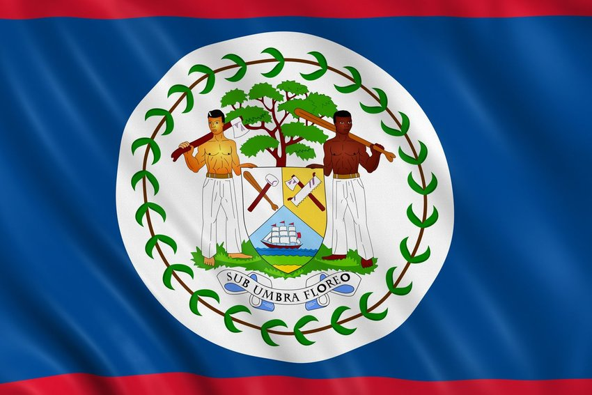Close up of Belize flag