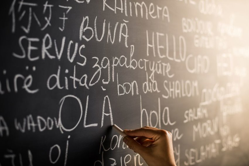 Person writing different languages on chalkboard