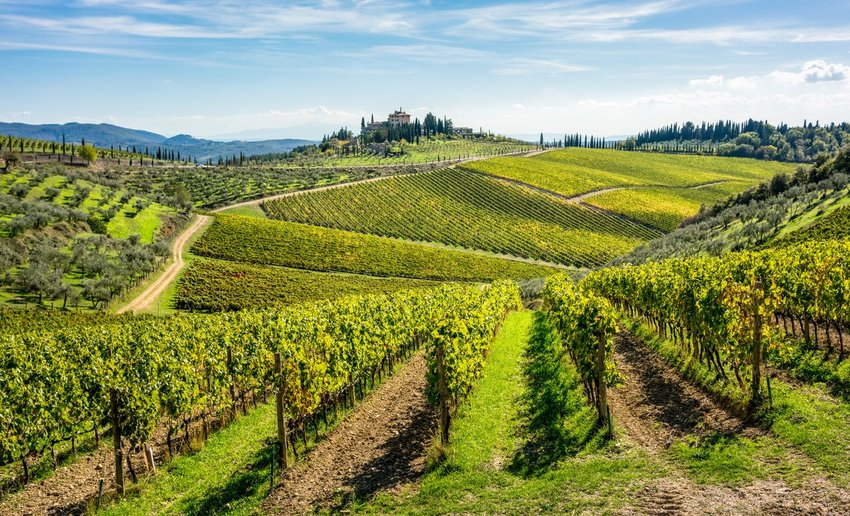 Rolling hills of Tuscan vineyards in the Chianti wine region