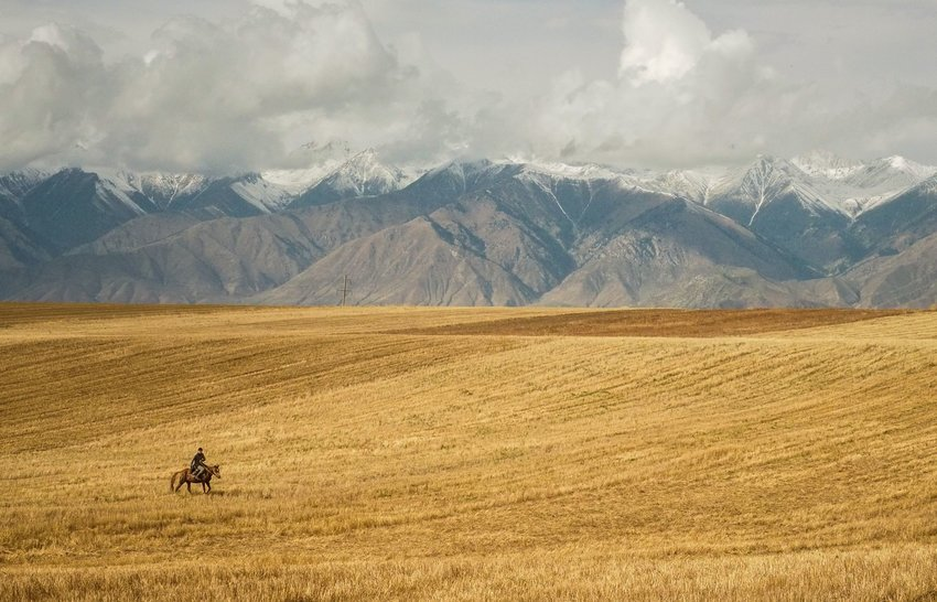 Person riding horse across meadow with mountains in background in Kyrgyzstan