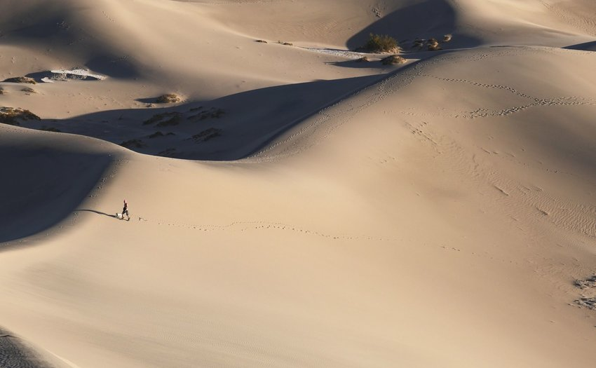 Person walking over sand dunes with dog in Death Valley