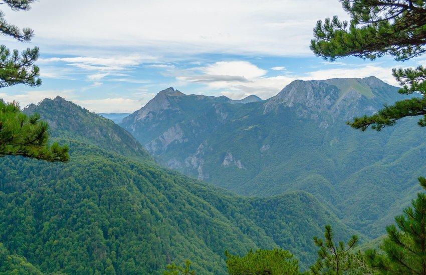 Perućica rainforest in Bosnia and Herzegovina