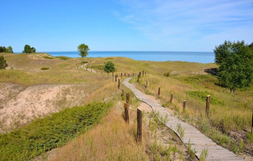 Walkway through dunes to the water