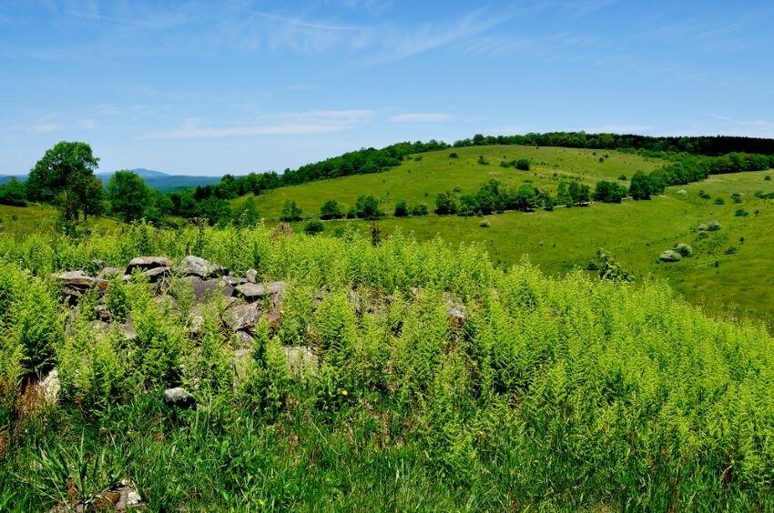 Staunton Parkersburg Turnpike Pocahontas County, West Virginia.