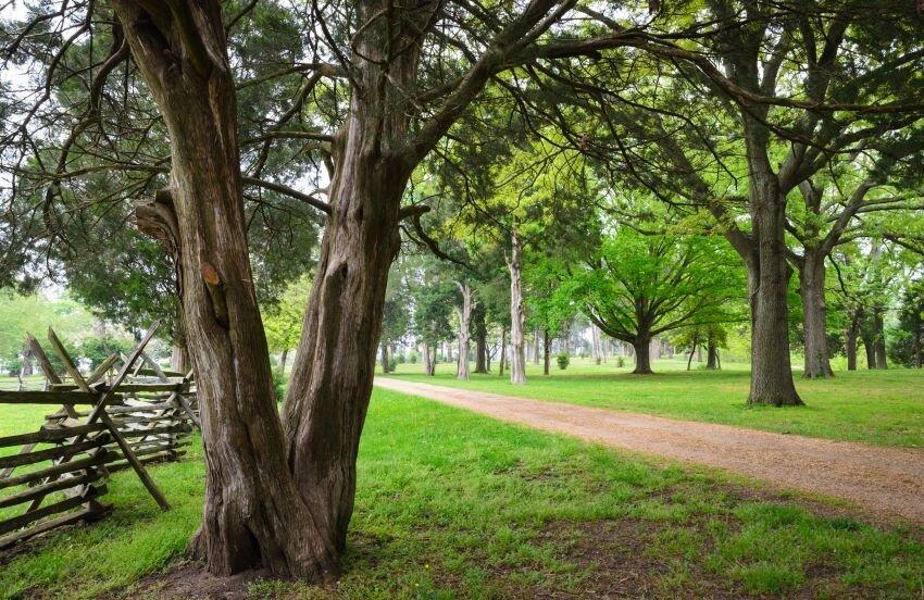 Rural Virginia scene at George Washington National Monument.