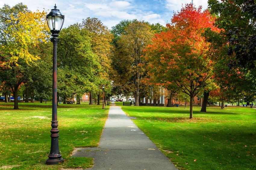 Lamppost and park path amid autumn leaves in New Haven, Connecticut